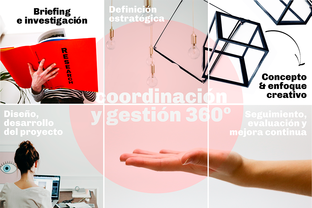 branding packaging sector alimentación strategic communication and design prosa project